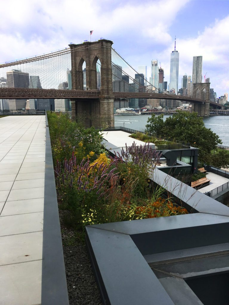 SkyGarden Green Roof, Live Roof by Skydeck USA Rooftop Terrace